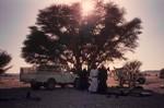 Family camp at Wadi Haytam